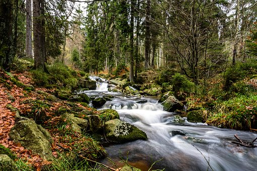 A beautiful stream that shows the movement of the ebbs and flows.